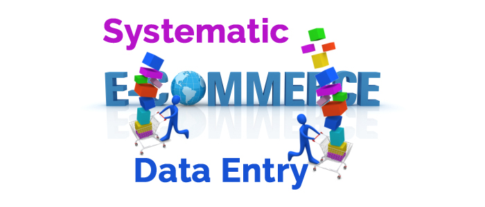 e-commerce-data-entry