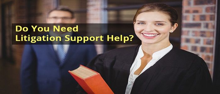 Litigation Support Professional